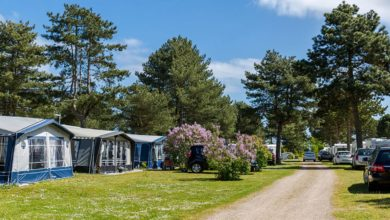 Photo of Smukke Feddet Camping